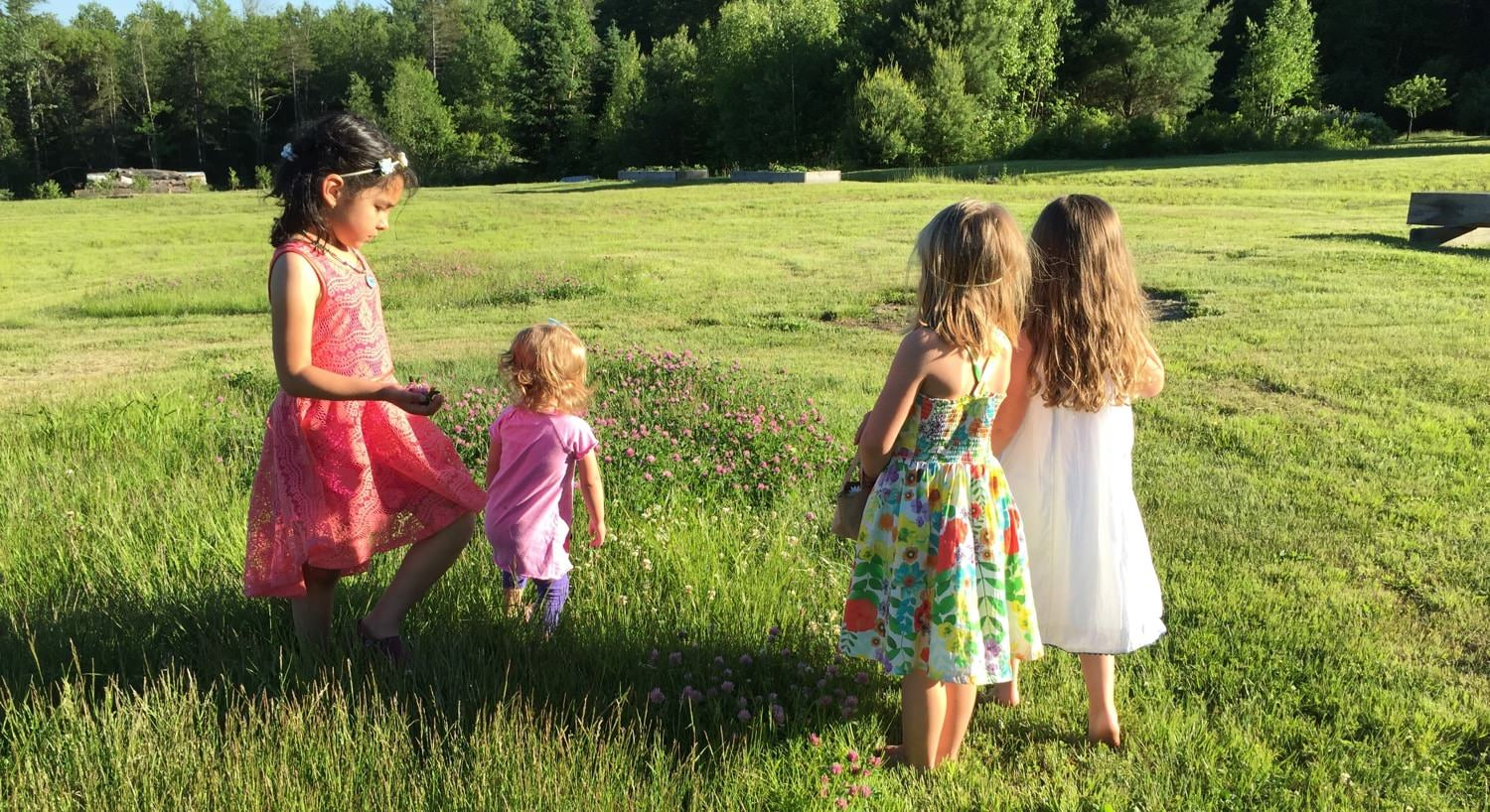 Four young girls wearing sundresses and playing in the grass