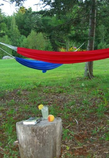 Red and blue hammocks tied to trees surrounded by green grass and trees, tree stump topped with lemonade, a peach and book