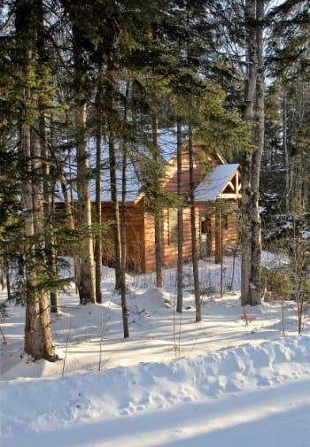 Log cabin with snow covered gable roof surrounded by pine trees and snow covered ground